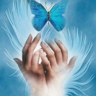 Mese a pillangókról